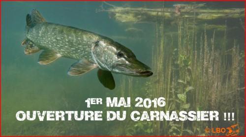 Bonne pêche à tous !!!