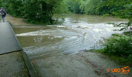 La rivière Loiret en crue...